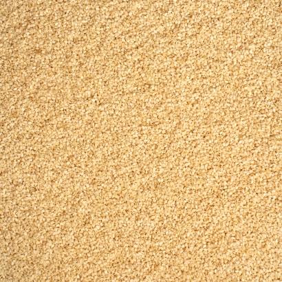 Sesamsaat die natürliche Eiweißquelle mit Eisen