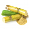 Roh-Rohrzucker aus Zuckerrohr naturbelassen für vollen Genuss