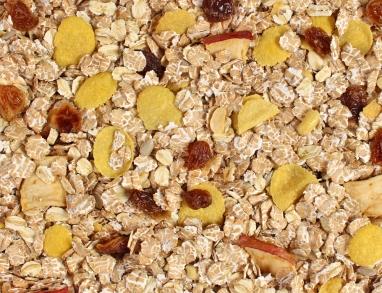 Bircher Müsli mit Apfel und Rosinen